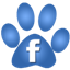 Pet Tags Facebook Page